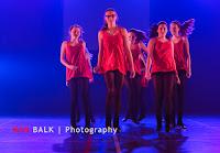 Han Balk Voorster Dansdag 2016-3988.jpg