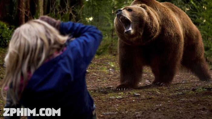 Ảnh trong phim Trong Mê Cung Gấu Xám - Into the Grizzly Maze 1