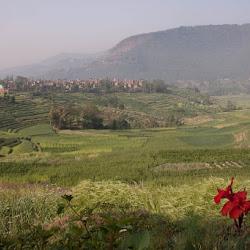 Nepal-247