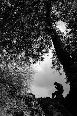 sombras que enmarcan. Foto de Carlos Larios