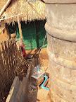 water tank for the mushroom farm