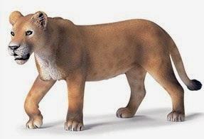 Mô hình sư tử cái Schleich 14363