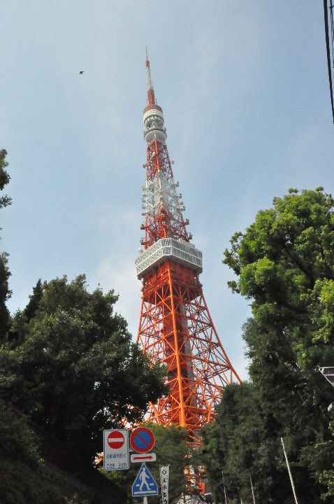 Tag_8_-11_Tokyo_0001