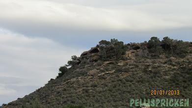 Photo: Ett eget berg fanns det med som skyddade mot havsvindarna