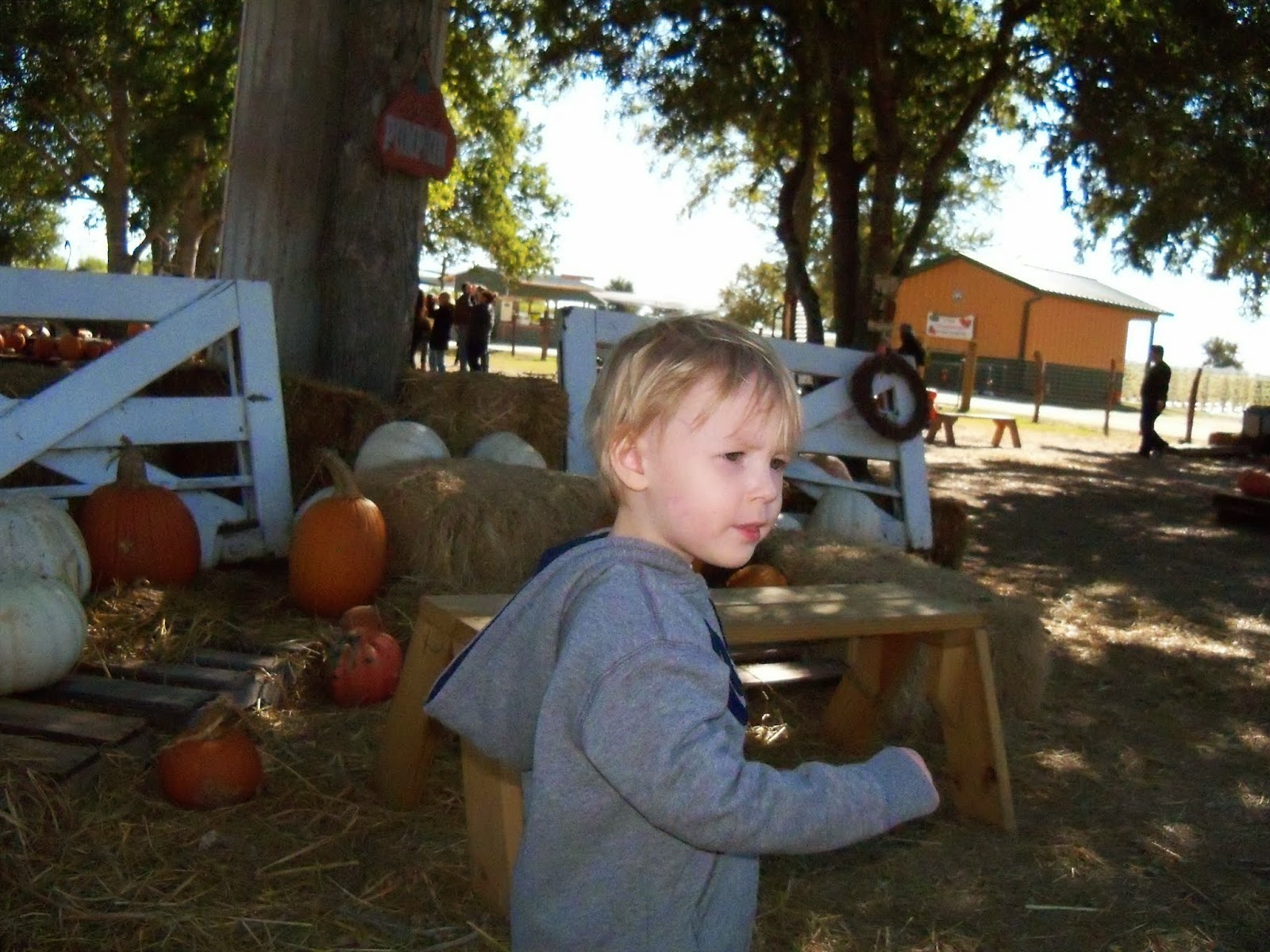 Blessington Farms - 116_4969-001.JPG