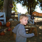 Blessington Farms - 116_4969-001.JPG