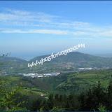 Arboleda011.jpg