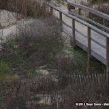 Surfside Beach Spring Break - IMGP5417.JPG