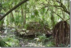 Monkey Island-4