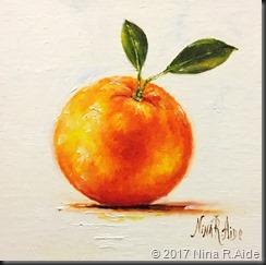 IMG_5904 Orange