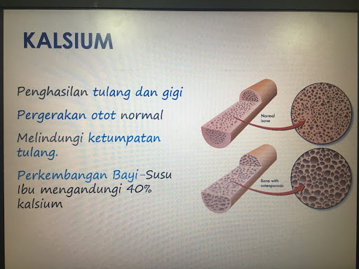 image results for kepentingan kalsium