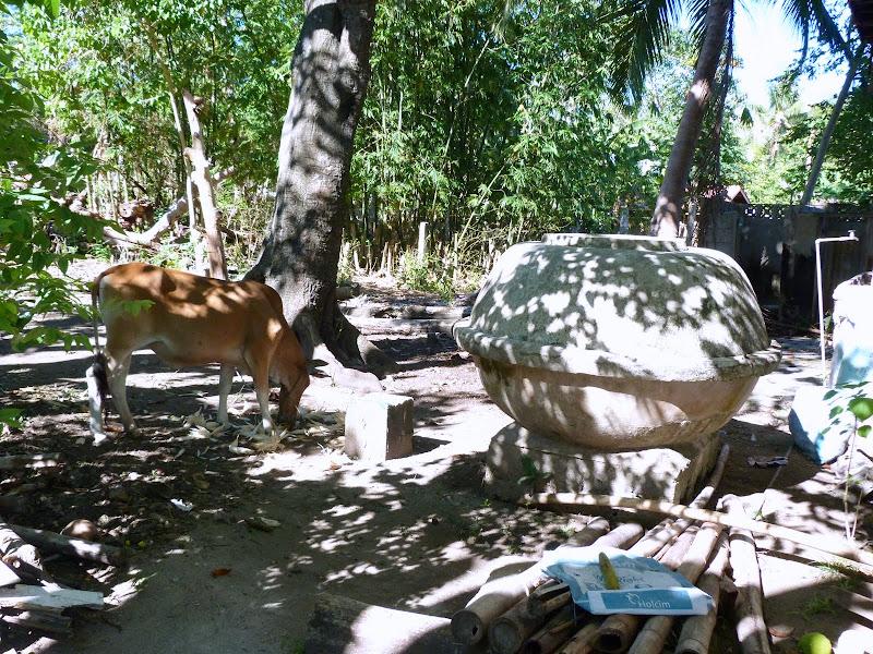 Camotes et Poron island - philippines1%2B822.JPG