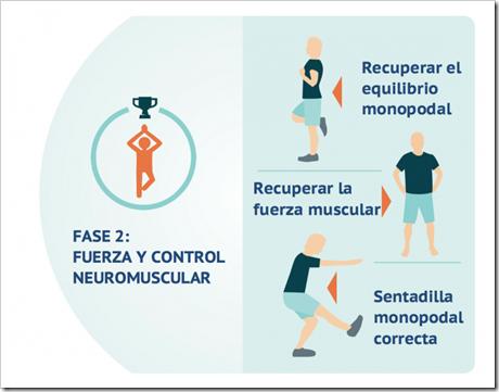 2 Rehabilitación del Ligamento Cruzado Anterior LCA en Pádel en cinco fases basado en objetivos.