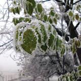 SingiDigital 28.12.2011 - 11.jpg