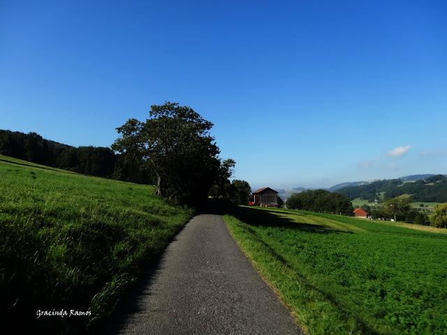 passeando - Passeando pela Suíça - 2012 - Página 15 DSC05585
