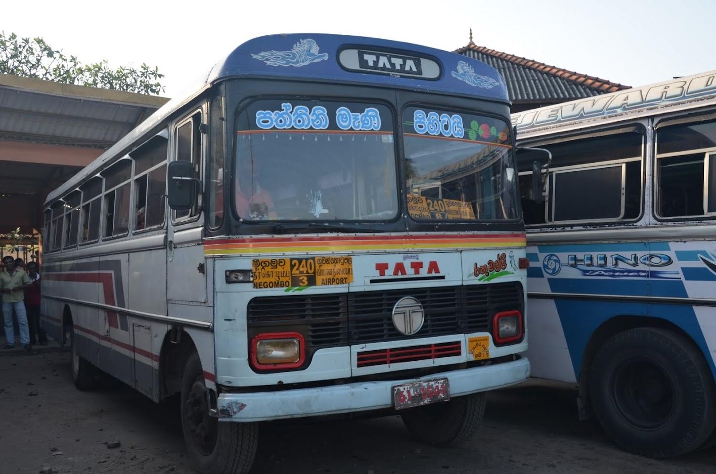 bus 240