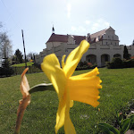 2015.04.21.,Klasztor w Ostrzeszowie, fot.s.A (22).JPG