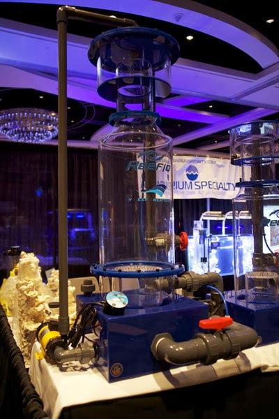 2010 MACNA XXII - Orlando - DSC01576_2.jpg