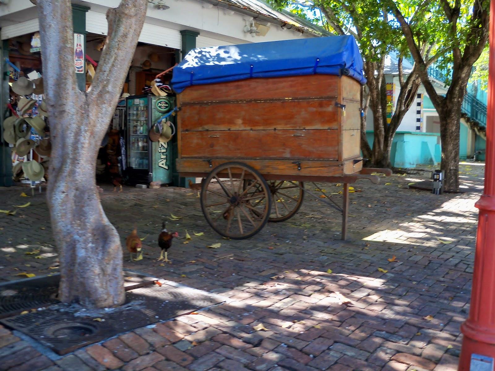 Key West Vacation - 116_5469.JPG