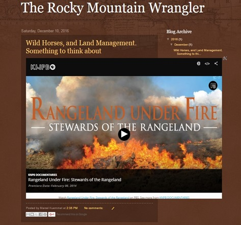 Rocky Mountain Wrangler Screenshot