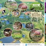 Путеводитель по экологическому парку в Пенстхорпе. Наблюдение и фотоохота, кормление птиц, гостиница для насекомых