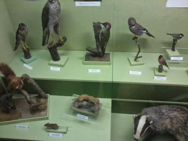 Múzeum - 2012-09-01%2525252015.51.44.jpg