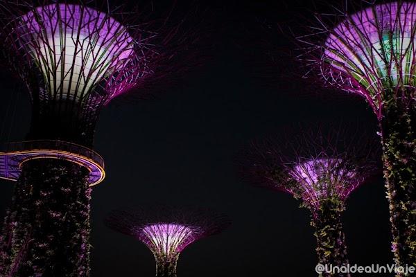 singapur-que-ver-colarse-marina-bay-unaideaunviaje.com-21.jpg