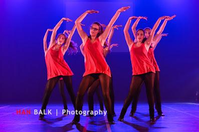 Han Balk Voorster Dansdag 2016-3991.jpg