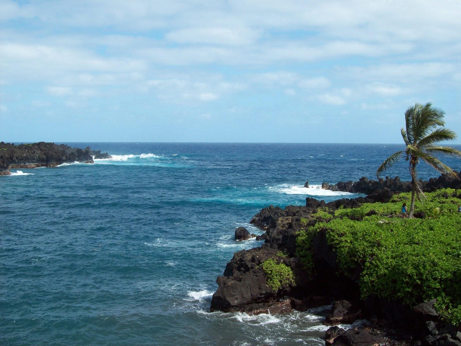 Hawaii Day 5 - 114_1550.JPG