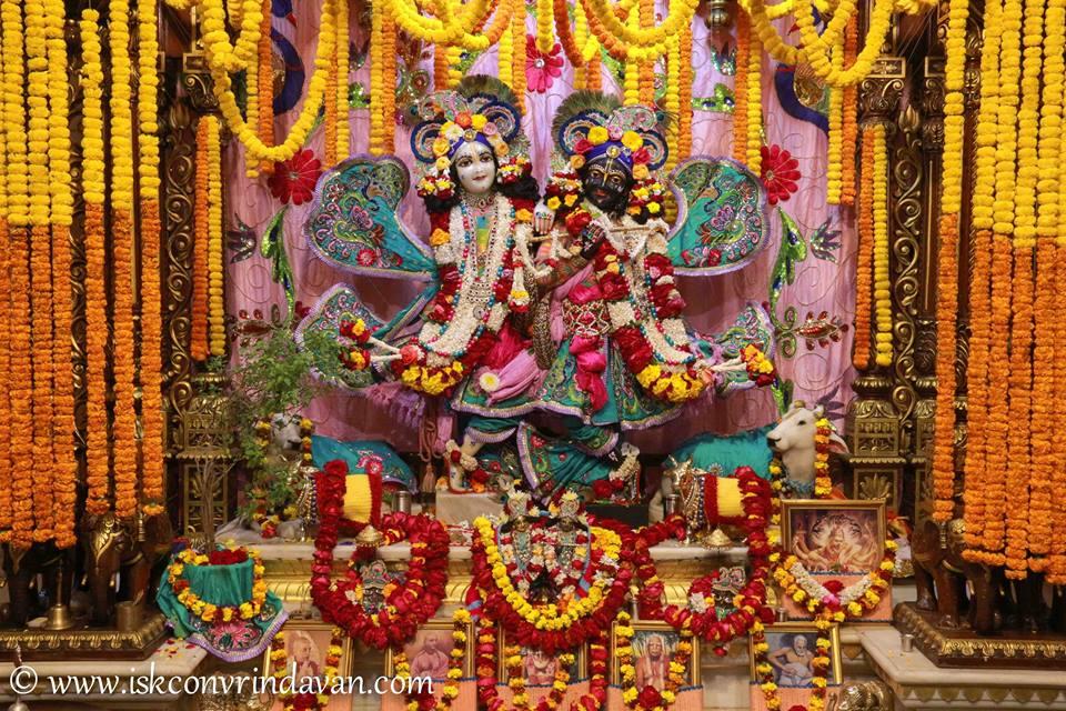 ISKCON Vrindavan Sringar Deity Darshan 15 Jan 2016  (19)