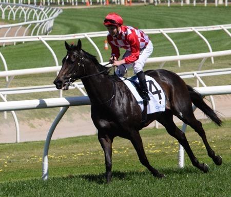 race 5_sheidel 4