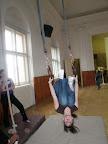 Výcvik netopýrů