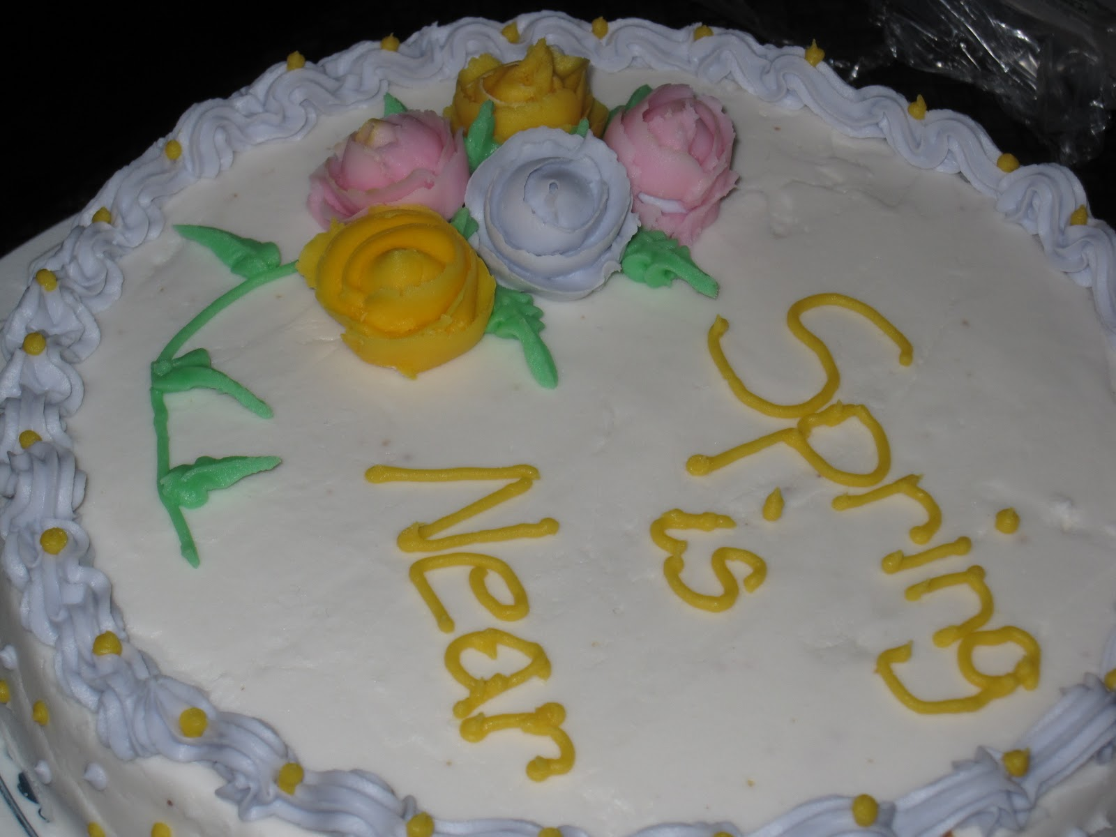 Michaels Cake Decorating Class Times : Michael s Basic Cake Decorating Class - Day 4 - She Bakes Here