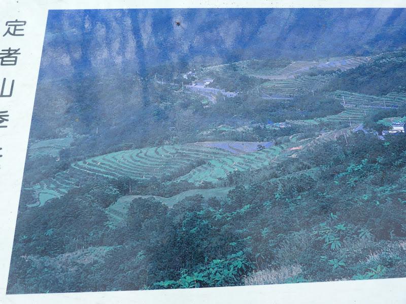 TAIWAN Daxi . Randonnée Taoyan valley - P1260048.JPG