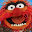 Stephen Gousie's profile photo