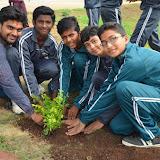 Gurukul Green Revolution (16).jpg