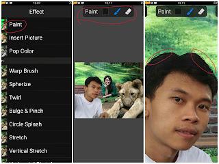 picsay pro foto