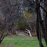 bridge_MG_2352-copy.jpg