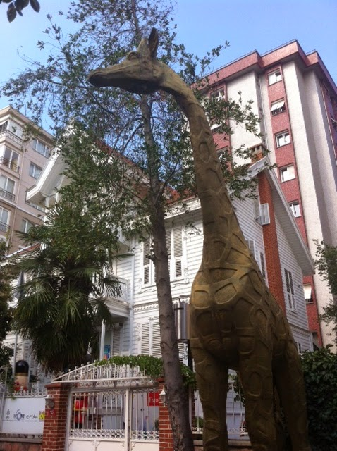 giraffes toy museum istanbul