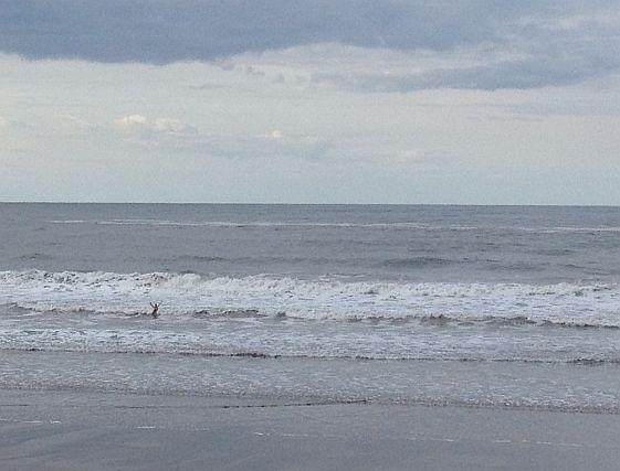 Miri im Meer bei Whitby