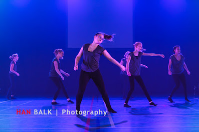 Han Balk Voorster Dansdag 2016-4181.jpg