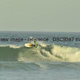 _DSC9387.thumb.jpg