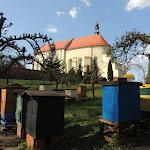 2015.04.21.,Klasztor w Ostrzeszowie, fot.s.A (83).JPG