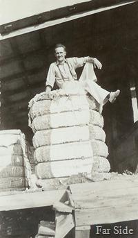 Cotton Bales in Louisianna