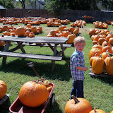 Pumpkin Patch 2015 - 100_0412.JPG