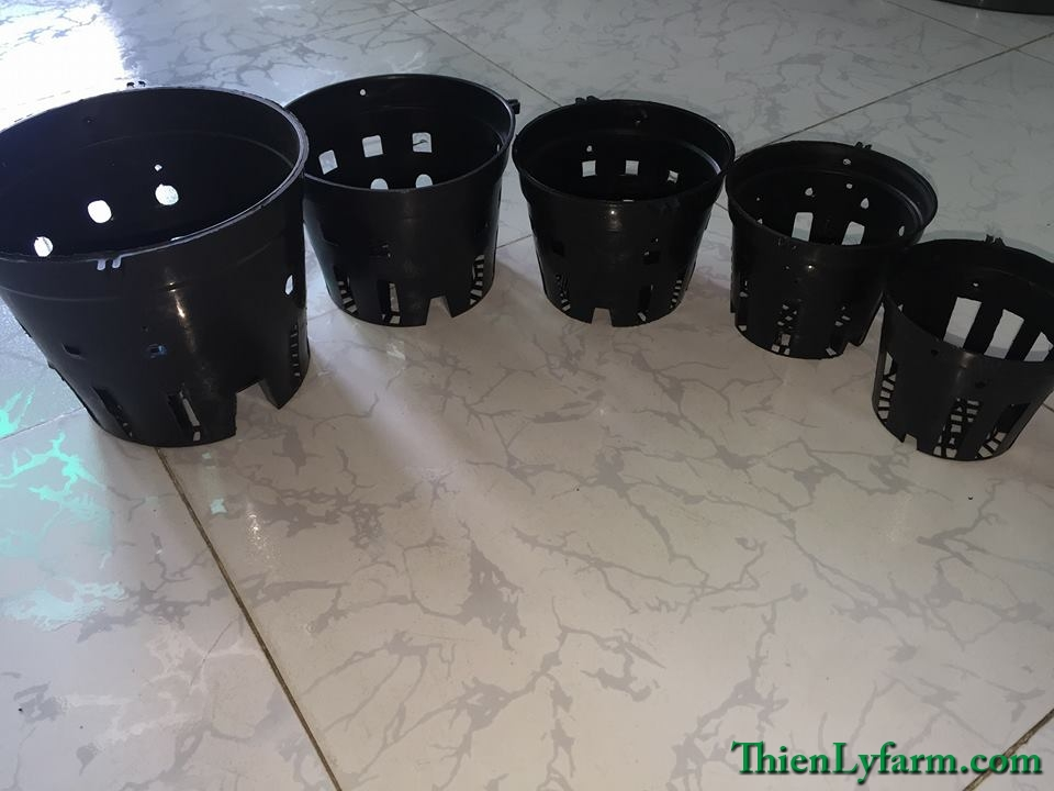Chậu nhựa tròn các loại fi 12; 14; 16; 18 và fi 21