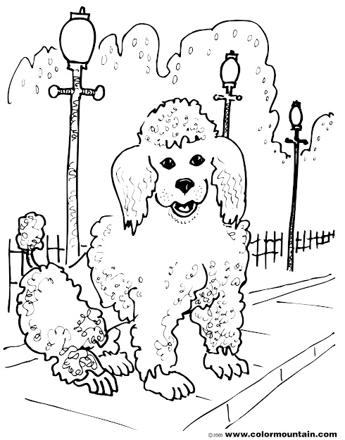 Girl Poodle Coloring Pages Girl Free Printable Coloring Pages