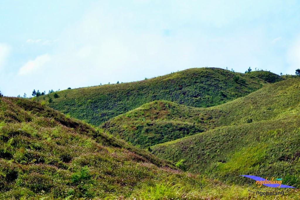 ngebolang gunung prau 13-15-juni-2014 nik 2 090
