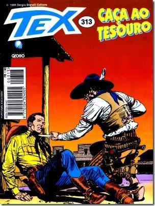 Tex - 313