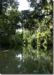 River view-3